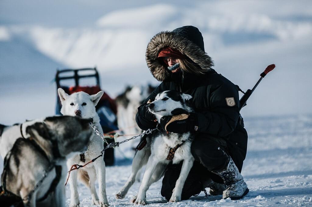 activite-musher-chiens-de-traineau-svalbar-sandgrouse-travel