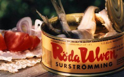 Le surströmming, quand la Suède en fait tout un plat