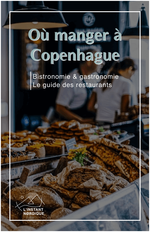 ou-manger-copenhague-restaurant-guide-complet